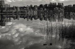 Lake Reflection Sky (Stefano Rugolo) Tags: stefanorugolo pentax k5 pentaxk5 smcpentaxda1855mmf3556alwr ricohimaging lake reflection sky monochrome landscape sweden hälsingland sverige water stillness