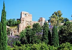 Malaga (Andalousie) (Iwokrama) Tags: espagne andalousie malaga alcazaba palais périodemauresque jalapandra architecture