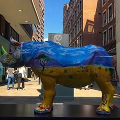 Tusk Rhino Trail (brimidooley) Tags: tuskrhinotrail rhinoceros art publicart london uk england greatbritain