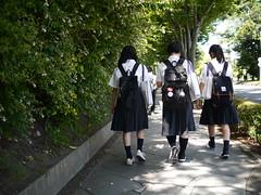 Walking around (しまむー) Tags: panasonic lumix dmcgx1 gx1 g 20mm f17 asph 東北大学 オープンキャンパス tohoku university tour