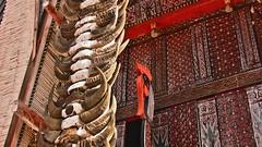 INDONESIEN; SULAWESI, Tanah Toraja , in Lemo, Giebelschmuck an einem   tongkonan , die Büffehörner der Opferstiere und dieSchnitzereien symbolisieren  den Wohlstand der Familie,  17630/10639 (roba66) Tags: sulawesi urlaub reisen travel explore voyages rundreise visit tourism roba66 asien asia indonesien indonesia insel celebes island île insulaire isla toraja tanahtoraja volk brauchtum tradition bauwerke «torayavillage» tongkonan «ricestore» reisspeicheralang ahnenkult mythen bauwerk architektur architecture arquitetura building bau façade platz places historie history historic historical geschichte skulptursculpture relief urban giebel holzschnitzerei