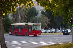 Икарбус ИК103 (Somi303) Tags: икарбус ик103 ик 103 гсп београд аутобус нови белвил гаража централа ikarbus ik103 ik gsp beograd belgrade bus autobus visokopodni belvil garaža novi garaza