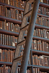 Books and Ladders (dougbank) Tags: books library indoors inside ireland brown vertical dublin