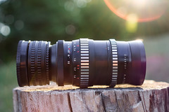 Meyer-Optik Görlitz Orestor 135mm ƒ/2.8 aka 'Bokehmonster' (.: mike | MKvip Beauty :.) Tags: sony⍺6000 sonyilce6000 sonyalpha6000 sonyalpha sony alpha emount ⍺6000 ilce6000 samyangaf35mmƒ28fe samyang 35mm ƒ28 af meyeroptikgörlitzorestor13 meyeroptikgörlitz orestor 135mmƒ28 bokehmonster vintagelens vintageprime primelens prime manuallens manual manualondigital lens lensporn camera cameraporn gearshot grötzingen karlsruhe germany europe mth mkvip meyeroptikgörlitzorestor135mmƒ28