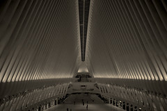 World Trade Center (McPhotography_) Tags: architettura persone linee monocromo finestra ny subway edificio geometrico