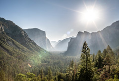 Sunlight (jonsimeral) Tags: california a7rii sonya7rii valley goodmorning sunstreak morning nationalparks yosemitenationalpark elcapitan halfdome yosemitevalley yosemite tunnelview