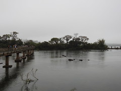 Rio Iguazu (Alexandre Marino) Tags: cataratas cataratasdoiguaçu puertoiguazu argentina