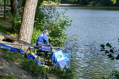 Concours de pêche (CORMA) Tags: belgique belgium belgië europe europa 2018 ardennes provincedeliège lacdewarfaaz pêche