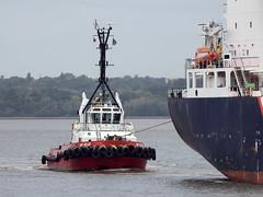 DSCN2525 (Darren B. Hillman) Tags: smitbelgie rivermersey kotugsmit asdtug3110 damen tug ships bromborough nikon p900