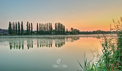 The Pond of Combourg Castle (Sylvie Nenan) Tags: combourg pond etang bretagne brittany water gre tree arbre verdure country countryscape landscape paysage sun sunset sunrise landscapesdreams ngc