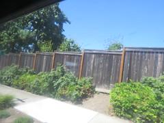 IMG_8301 (Andy E. Nystrom) Tags: bellevue washington wa bellevuewashington