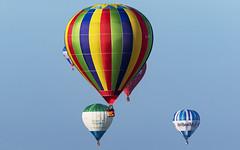 20180915-082203-Longleat-2 (Neil D. Brant) Tags: abovebeyond balloonsafari2018 cameronballoons cameronc90concepthab camerono31hab cameronz90hab dribuild gchxs gcihg gcjoi gsmil lighterthanair lindstrandballoons lindstrandlbl105ahab location longleat manufacturer nonairport operator sponsor unitedkingdom warminster wiltshire england gb