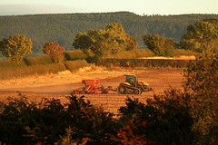 End of Summer (Mike.Dales) Tags: eastharlsey northyorkshire farmers sowing autumn summer goldenlight