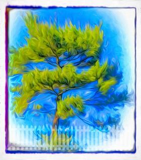 Atkinson Tree