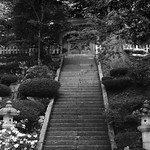 Stairway to the temple thumbnail