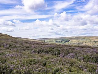 Stanbury Moor, West Yorkshire