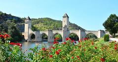 Pont Valentré at Cahors, France (M McBey) Tags: cahors bridge riverlot pontvalentré ancient medieval picturesque wayofstjames river flowers