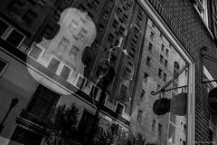 The Windows of a Cello ©2018 Steven Karp (kartofish) Tags: davidmichieviolins locuststreet philadelphia pennsylvania cello window reflection fuji fujifilm xt2 blackandwhite