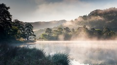 Rydal Mists (John Ormerod) Tags: rydalwater rydal mist misty water lake trees light sunlight sun morning lakedistrict cumbria mood atmosphere landscape nikon leefilters photography photograph england britain