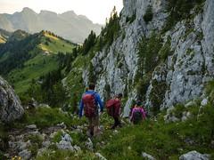 La Gruyère - Jaun / Ref.02365 (FRIBOURG REGION) Tags: suisse switzerland schweiz fribourgregion fribourgrégion lagruyère jaun grandtourdesvanils été sommer summer préalpes voralpen prealps alpes alpen alps montagne mountains berge colduloup wandern randonnée hiking sky himmel ciel gstaad bern ch flancdemontagne gebirge paysage landschaft landscape personnes personen people
