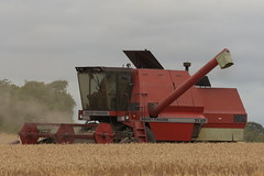 Massey Ferguson 31XP Combine Harvester cutting Winter Wheat (Shane Casey CK25) Tags: massey ferguson 31xp cutting winter wheat mf agco red castletownroche grain harvest grain2018 grain18 harvest2018 harvest18 corn2018 corn crop tillage crops cereal cereals golden straw dust chaff county cork ireland irish farm farmer farming agri agriculture contractor field ground soil earth work working horse power horsepower hp pull pulling cut knife blade blades machine machinery collect collecting mähdrescher cosechadora moissonneusebatteuse kombajny zbożowe kombajn maaidorser mietitrebbia nikon d7200 combine harvester