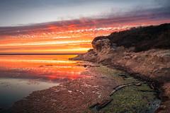 San Gregorio II (sberkley123) Tags: california d850 beach nikon sunset reflections sanfrancisco sangregorio colors ocean usa coast pacific 1424mm