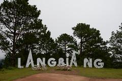 _DSC6580 (Quyr) Tags: dalat vietnam green smoke frog cloud tree forest langbiang lamdong portrait thunglungvang duonghamdatset