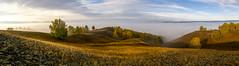 Южный Урал. Панорама #своифото, #пейзаж, #природа, #утро, #рассвет, #дерево, #натура, #восход, #sunrise, #nature, #tree, #Landscape, #sun, #туман, #лучи, #foggy,#природа, #небо, #небоголубое, #сониальфа, #сониа6000, #sonyalpha, #sonya6000, #natgeoru, #nat (ЛеонидМаксименко) Tags: natgeorussia сониа6000 сониальфа пейзаж восход sonyalpha небоголубое утро sonya6000 лучи natgeoru foggy tree nature небо landscape природа натура дерево sun natgeoyourshot рассвет своифото туман sunrise