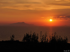 Vesuvio sunset (Ermado_Ph) Tags: landscape nature landscapelovers sky beautiful naturelovers clouds travel view photooftheday landscapecaptures amazing instagood instanature natureseekers iclandscapes love picoftheday trees instanaturelover naturephotography vscocam natur hike photo photography naturelover wilderness natureperfection natureporn landscapephotography tree travelgram skyporn peak landscapestylesgf landscapelover cielo paesaggio notte italy italia night fantastic light sony a6300 sunset spqr panorama luci albero tramonto acqua montagna mare sea ocean sorrento napoli vesuvio vulcano volcano orange yellow red black silhouette cloud nuvola nuvole