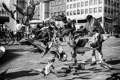 Pigeons classic.... (Sean Bodin images) Tags: streetphotography streetlife seanbodin streetportrait pigeons nørreport copenhagen citylife candid city citypeople children voreskbh visitcopenhagen visitdenmark vejret strøget københavn metropolight mitkbh denmark documentary delditkbh blackandwhite flâneur