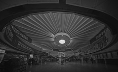 O'hare International Airport Terminal (Jovan Jimenez) Tags: sony a6500 12mm zeiss touit ohare international terminal black white gray bw interior architecture ceiling panoramic panorama distagon hdr lines monochromatic monochrome airport kolor autopano giga pixel gigapixel pro autopanopro chicago 16x9 widescreen alpha ilce 6500