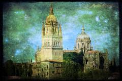 Catedral de Salamanca (alanchanflor) Tags: canon color textura catedral iglesia salamanca castilla arquitectura religión cielo torre cúpula españa pináculos