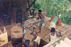 Afdrukken-stenen bakken-010b (Stichting Papua Erfgoed) Tags: zuidpapua msc stichtingpapuaerfgoed pace nieuwguinea nederlandsnieuwguinea irianjaya papua