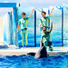 At the Dolphins and Sea Lions Show of Enoshima Aquarium, Fujisawa : イルカとアシカのショー(新江ノ島水族館)