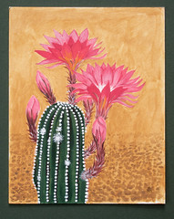 Echinopsis (M.P.N.texan) Tags: art botanical bloom blooming blooms flower flowers flowering cactus echinopsis handpainted original mpn