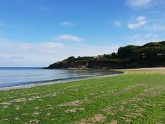 Maenporth, Cornwall. (christianiani) Tags: green seaweed beach beautiful weather maenporth falmouth cornwall seaside seashore coastline water sea pretty