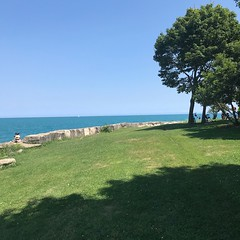 Hyde Park Beach - 2 (booboo_babies) Tags: trees hydeparkbeach hydepark lakemichigan chicago park summer greatlakes lake