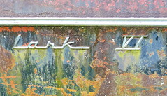 Studebaker Lark 6 1959-1963 13.6.2018 1934 (orangevolvobusdriver4u) Tags: 2018 archiv2018 georgia usa white oldcarcity scrapyard auto car klassik classic oldtimer schrottplatz abandoned verlassen abandonedcar studebaker studebakerusa detail zeichen logo badge brand studebakerlark6 studebakerlark61959 lark 6 1959