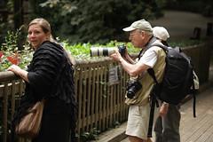 IMG_4467 (gabrielgs) Tags: holiday holiday2018 vakantie2018 camping frankrijk france zoo la fleche lafleche animals dierentuin loire