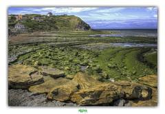 PLAGE DE LA SIRENE à AUDINGHEN (régisa) Tags: cliff falaise plage beach audinghen pasdecalais rocher
