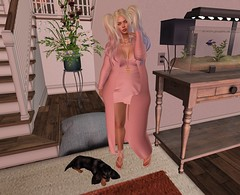 Fall is coming (Sultry ALLURE) Tags: chantelsatine chantel satine sultryallure secondlife sl avatar queenz alantori blogger blog pink rose puppy dog fish genus skinnery
