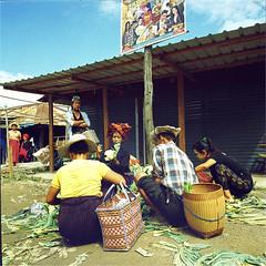 inle lake (thomasw.) Tags: inlelake shanstate myanmar burma birma asia asien southeastasia südostasien travel travelpics everydaymyanmar everydayeverywhere wanderlust analog cross crossed mamiya 120 mf square