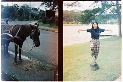 000068 (jovenjames) Tags: 2017 vietnam yashica electro 35 gx kodak vision3 500t diptych olympus pen ees2 light leaks analog film snapshots dalat