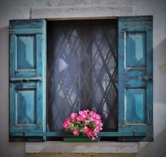 Un fiorito davanzale di Spiazzi. (ornella sartore) Tags: finestra fiori allaperto colori particolari