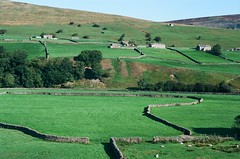 21060036 (christopher.harrall) Tags: dales cbh6767 film ais