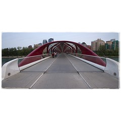 Peace Bridge. #photography #photooftheday #photoadaychallenge #canon7d #canon1022 #bridge #yyc #calgary #project365 (PSKornak) Tags: photography photooftheday photoadaychallenge canon7d canon1022 bridge yyc calgary project365