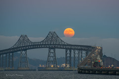 full moon rise today (FollowingNature (Yao Liu)) Tags: moonshot bridge traffic foggy smoke richmondsanrafaelbridge followingnature moonrise bayareabridge sanrafaelbridge richmondbridge fullmoon