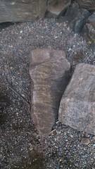 DSC_0059 (astro porifera) Tags: morainelake alberta canada rockies
