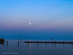 Blue hour (megmcabee) Tags: chesapeake bay calvert moon seaside pastel hour blue