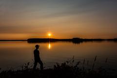 Sun sets behind a lake (VisitLakeland) Tags: finland kuopio lakeland summer auringonlasku backlight evening ferry järvi kesä lake lossi luonto maisema nature outdoor scenery sun sunset vastavalo water